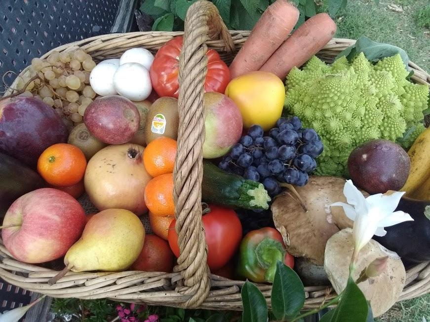 panier fruit legume